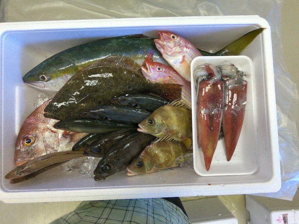 親子お魚料理教室06